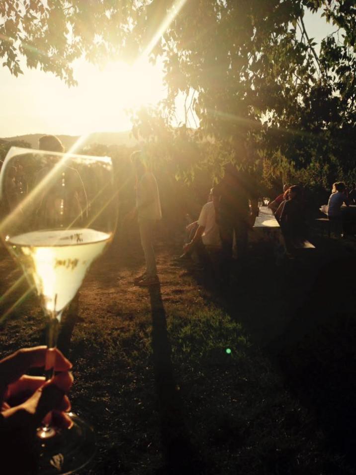 Aperitivo-vino-tramonto-in-vigna