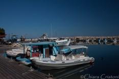 Latchi harbour