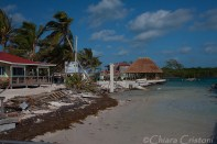 "Belize ""Caye Caulker"" split"
