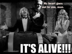 Yarn Mmmmm The Feeling Is Mutual Young Frankenstein 1974