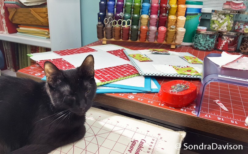 Block 6 Fair & Square │ Out of the Blue Quilts
