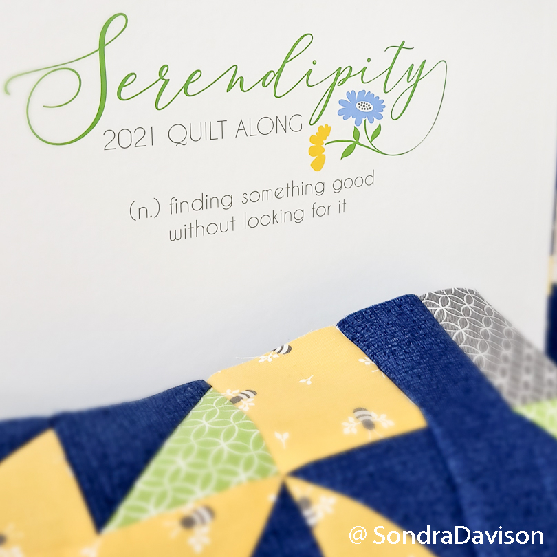 fqs serendipity quilt kit and block/row 1