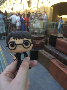 Harry was packed and ready to go, even Hedwig was along for the journey