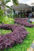 Oasis Hotel in Pampanga