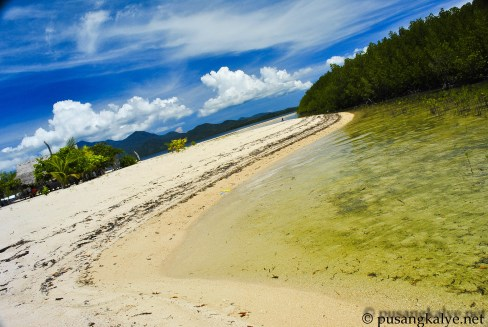 Starfish Island in Honda Bay Palawan