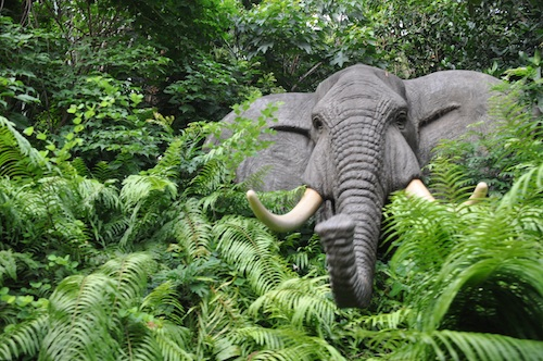 Elephant at the Jungle River Cruise
