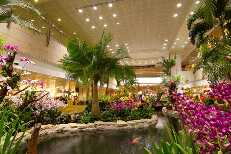Orchid Garden in Singapore Airport