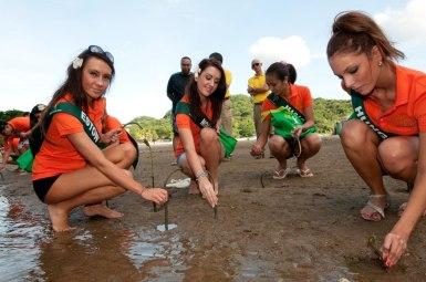 Miss Earth 2011 Delegates Planting Mangroves