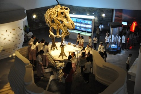 Dinasaur Replica