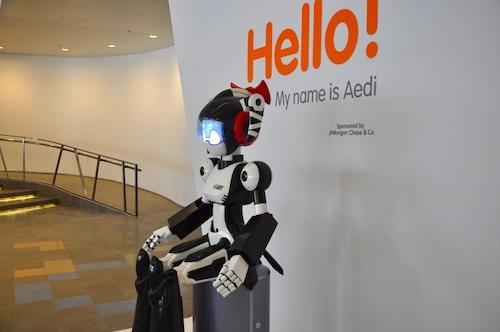 Meet Aedi