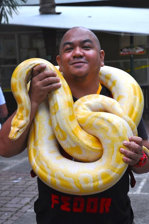 Albino Python at Davao Crocodile Park