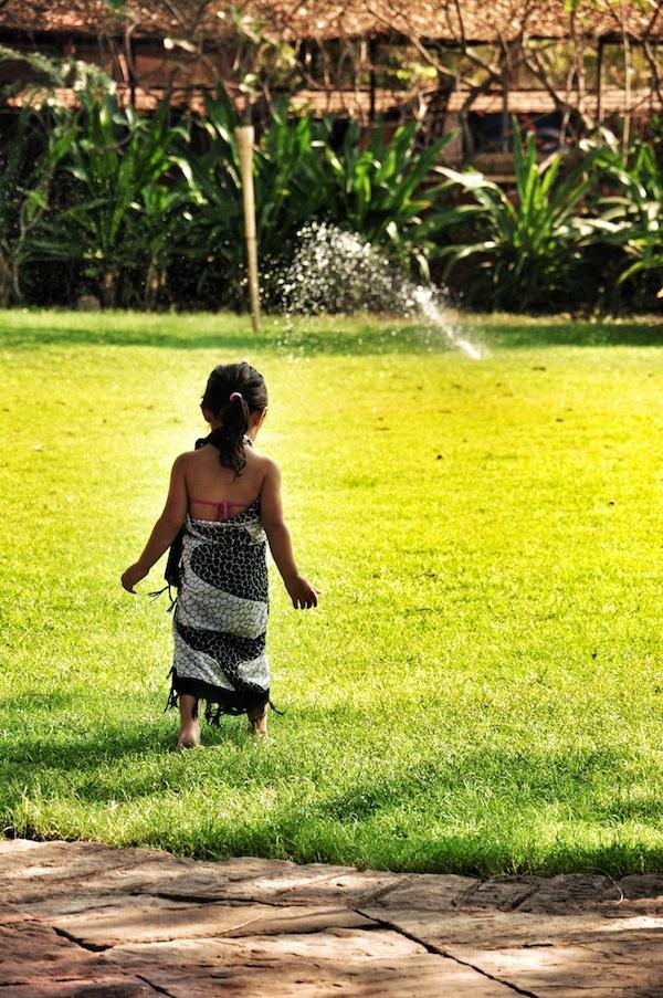 Luna playing near the pool