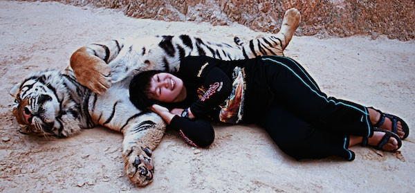 Sleeping with fave Tiger in Thailand
