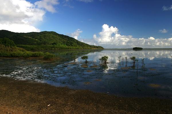 Early Morning in Palaui Island