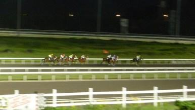 Live Horse Racing at San Lazaro Leisure Park