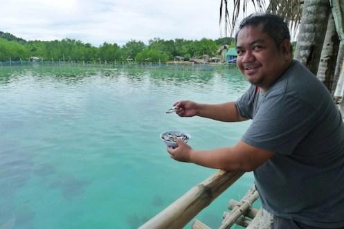 Fish Feeding in Juag Lagoon