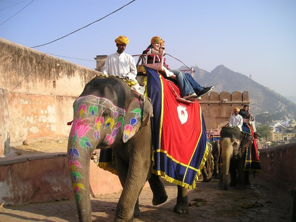 Elephant Safari in India