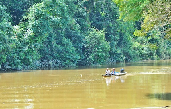 Niah River