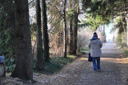 Walking Tour in Toronto Island