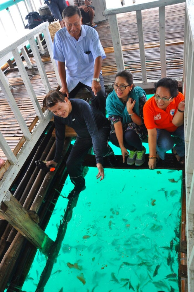 7 Fish Feeding at Looc Bay Marine Refuge and Sanctuary