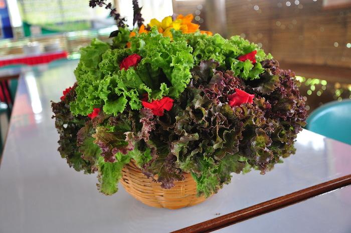 Beautifully aranged fresh organic vegetables