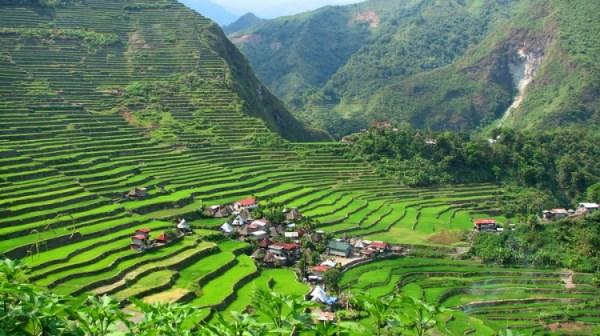 Batad Rice Terraces in Banaue Ifugao