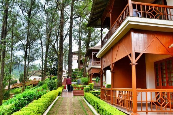 Tea County Resort in Munnar
