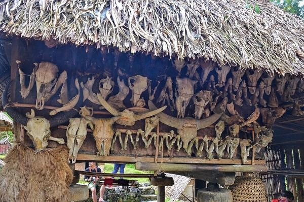 Animal Bones as a decorative pieces of Ifugao houses