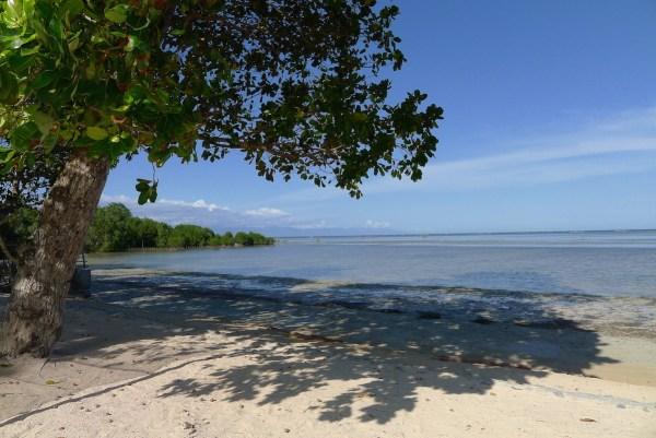 Blue Palawan Beach Front