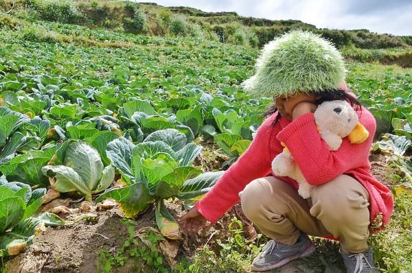 A local kid in Atok Cabbage Farm