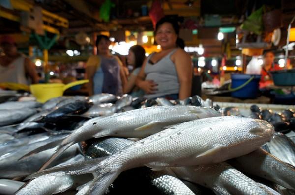 Fish Market in Davao by Rajesh Pamnani via Flickr