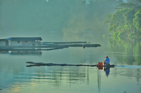 Early Morning in Sampaloc Lake