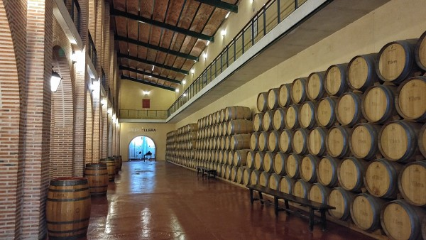 Grupo Yllera Barrels of Wine