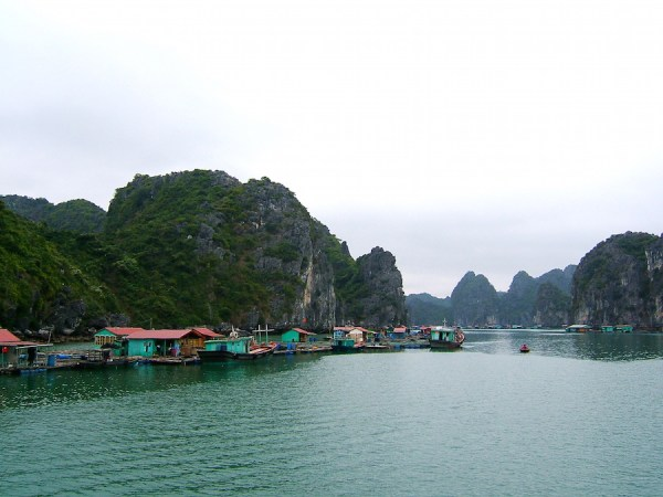 Cat Ba Island -Licensed under CC BY-SA 3.0 via Commons