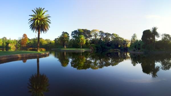 Lake at Royal Botanic Gardens