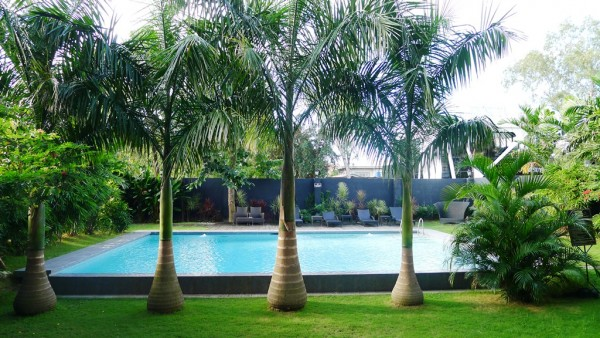 The pool by the lush green garden