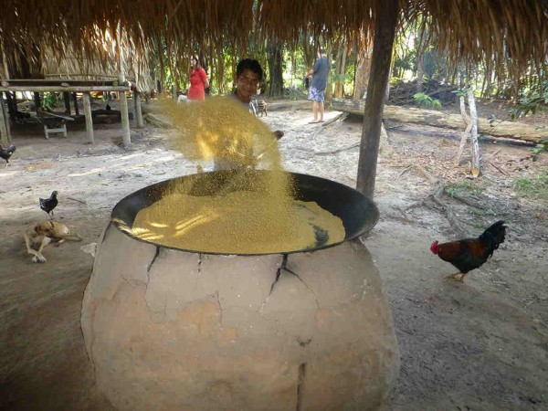 Manioc Flower Cooking