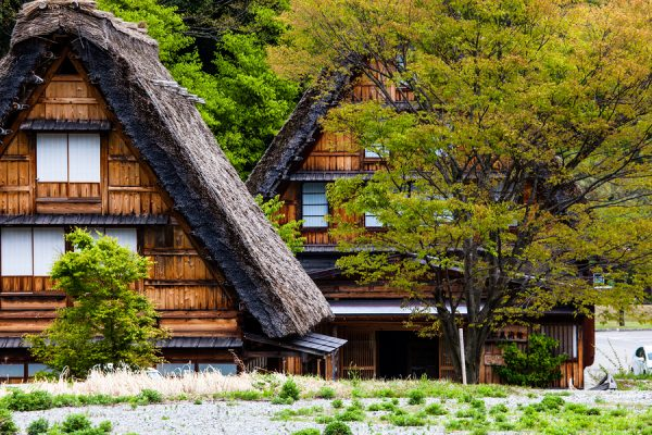 Traditional and Historical Japanese village Ogimachi - Shirakawa-go Japan