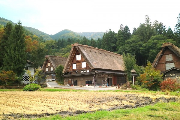Village Tour in Shirakawa-go