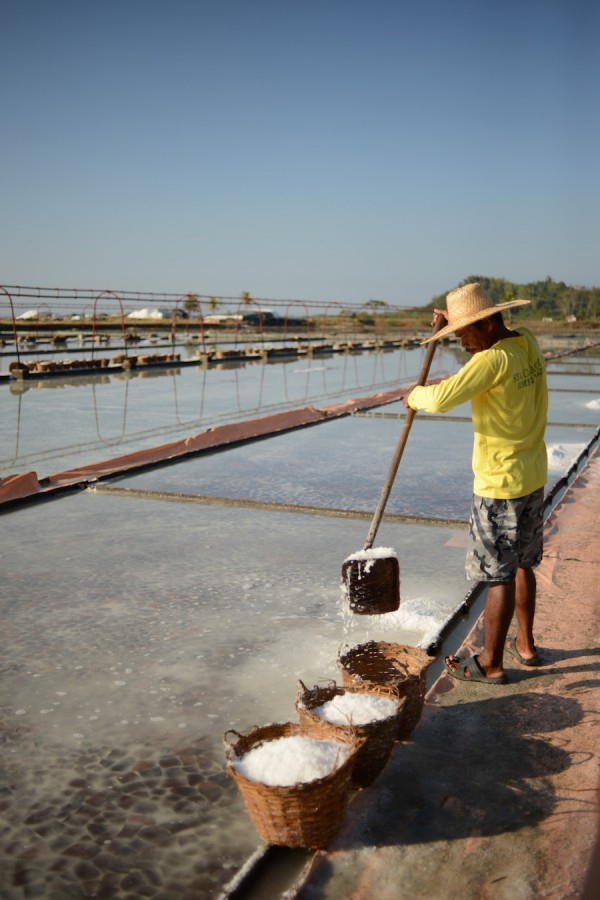 Pacific Salt Farm