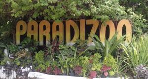 Paradizoo