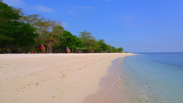 Pink Sand Beach of Sta Cruz Island