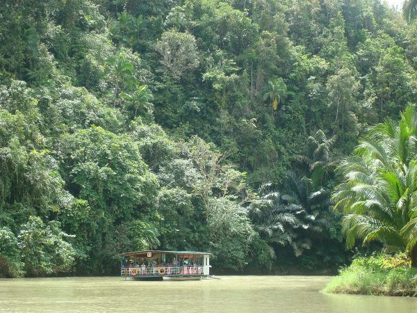 River cruise on the Loboc River