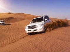 The Desert Drive