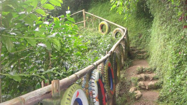 Hiking amid colors and nature breathes fascination inside the village