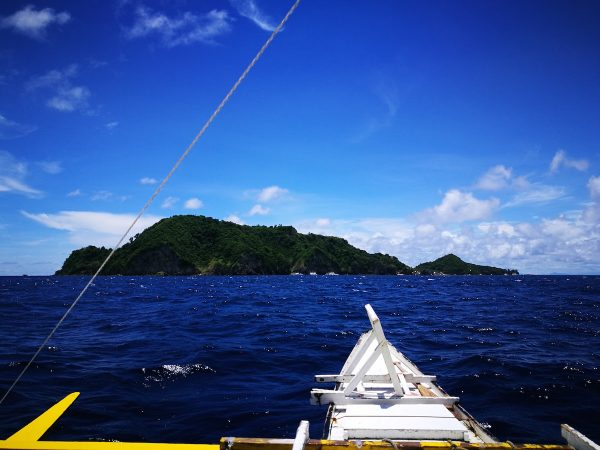 So near, yet so far... Quick Getaway to Apo Island