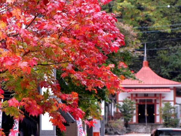 Autumn in Jozankei