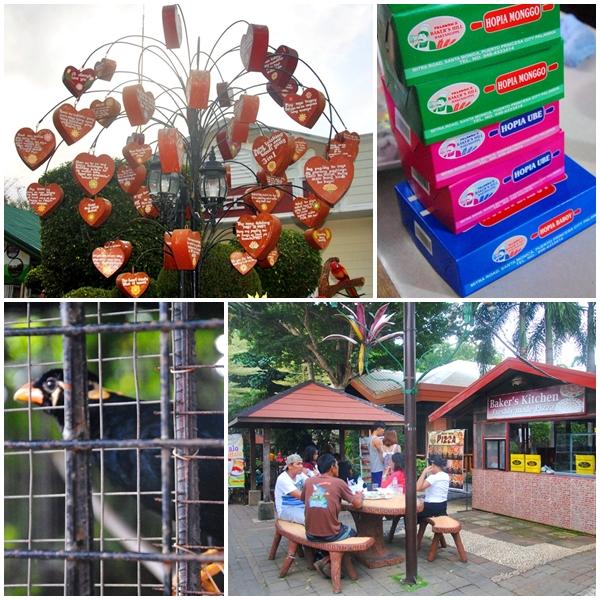 Bakers Hill Puerto Princesa