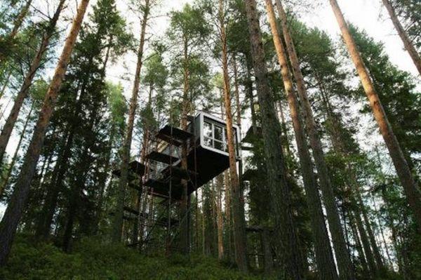 Treehotel in Sweden