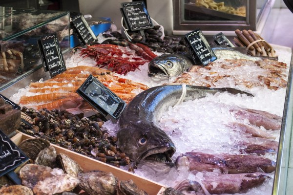 Fish Shop in Madrid